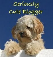 CuteBloggerAward